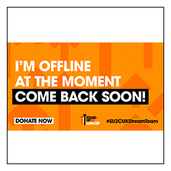 Stand Up To Cancer Stream Team Offline Image Overlay